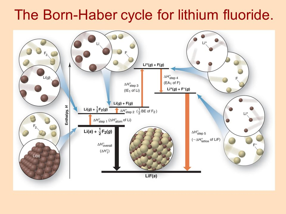 The Born-Haber cycle for lithium fluoride.