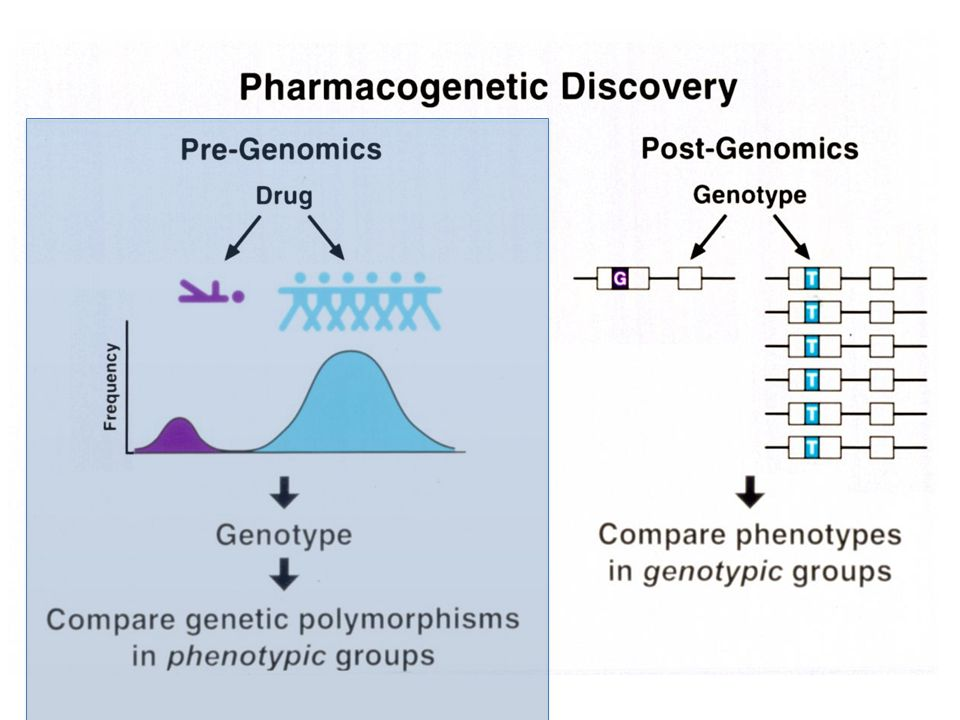 Empiric observations suggesting Pharmacogenetics important