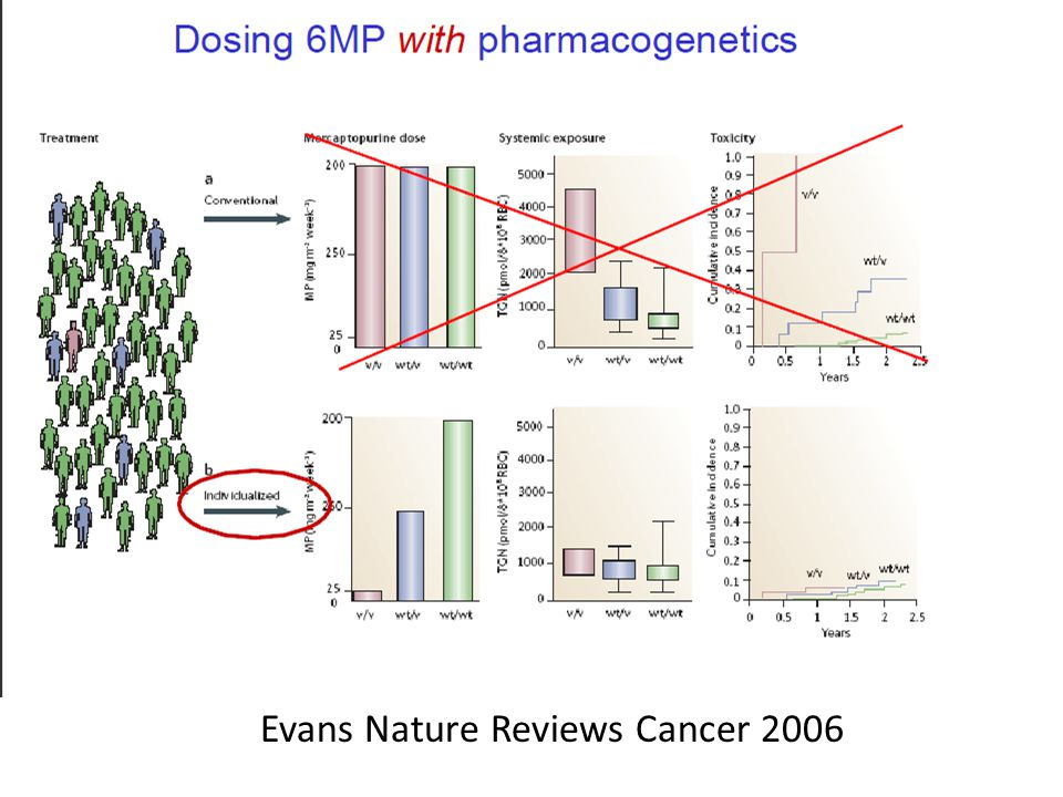 Evans Nature Reviews Cancer 2006