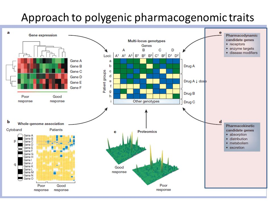 Approach to polygenic pharmacogenomic traits