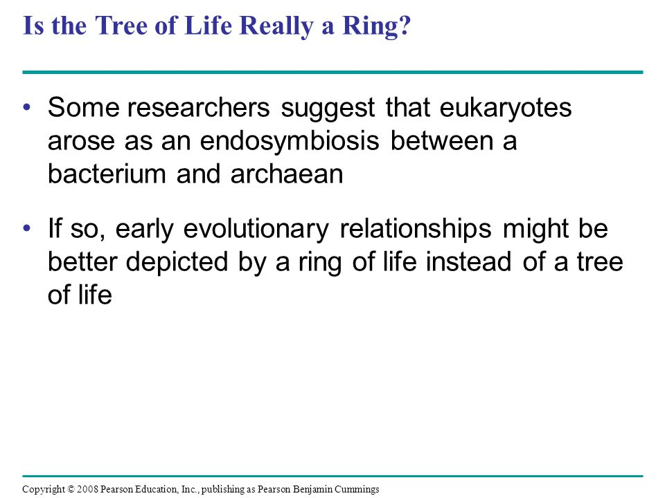 Is the Tree of Life Really a Ring