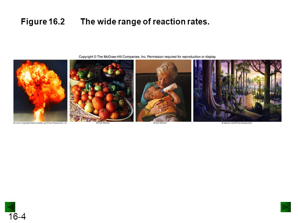 Figure 16.2 The wide range of reaction rates.