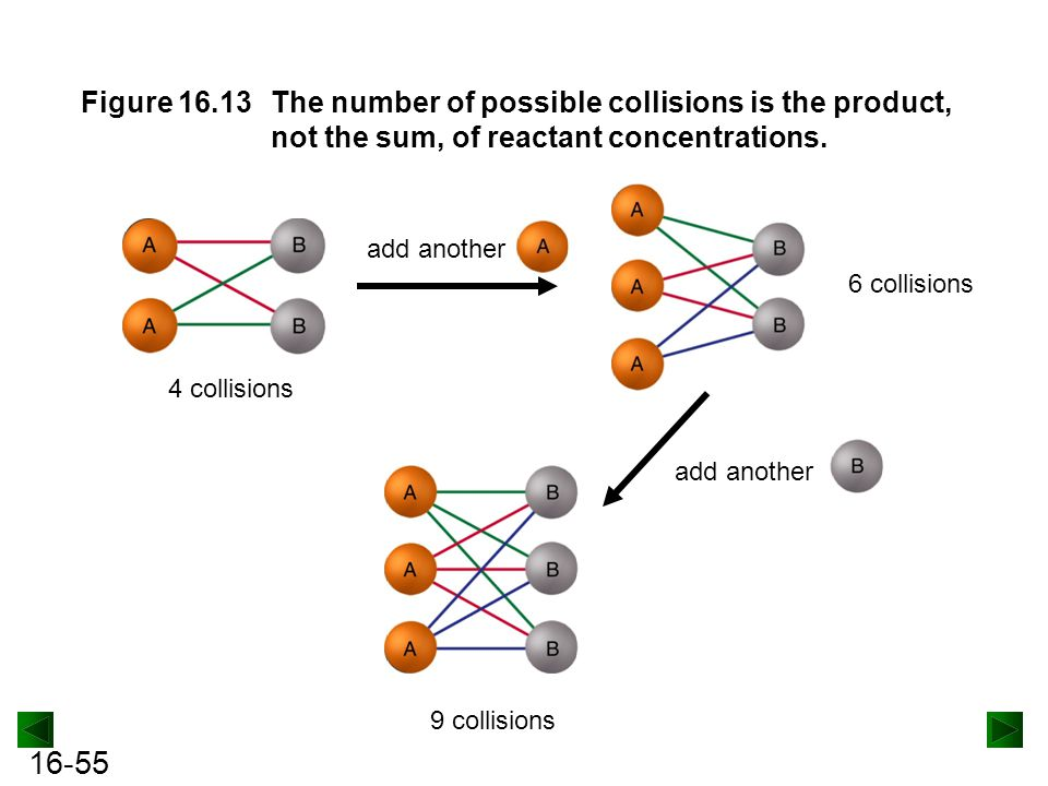 Figure 16.13 The number of possible collisions is the product, not the sum, of reactant concentrations.