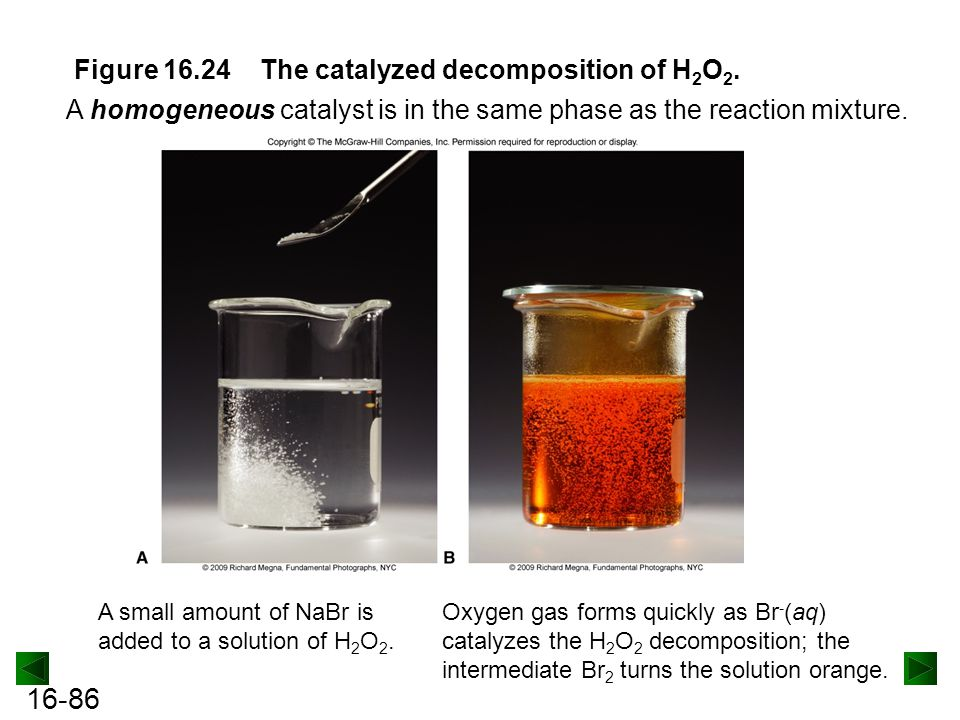 Figure 16.24 The catalyzed decomposition of H2O2.