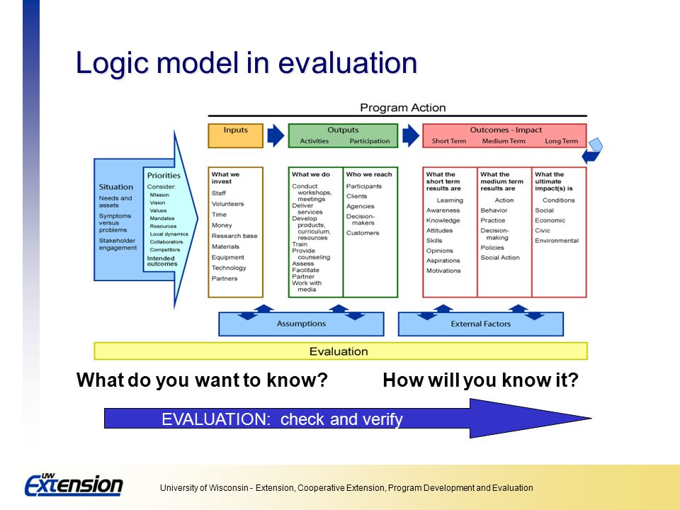 Logic model in evaluation