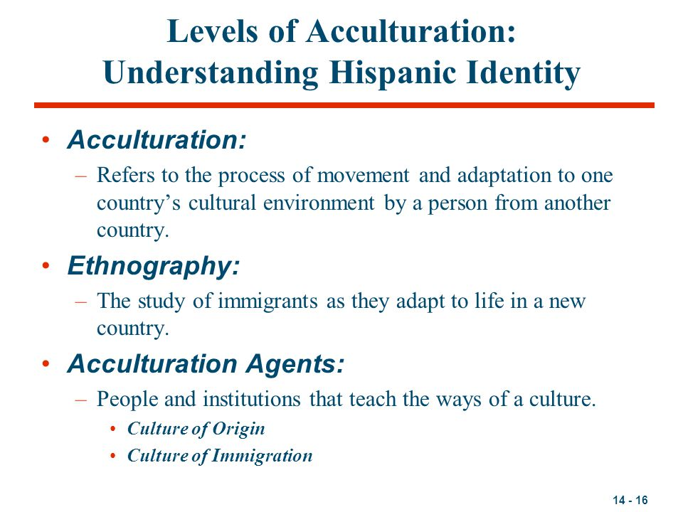 Levels of Acculturation: Understanding Hispanic Identity