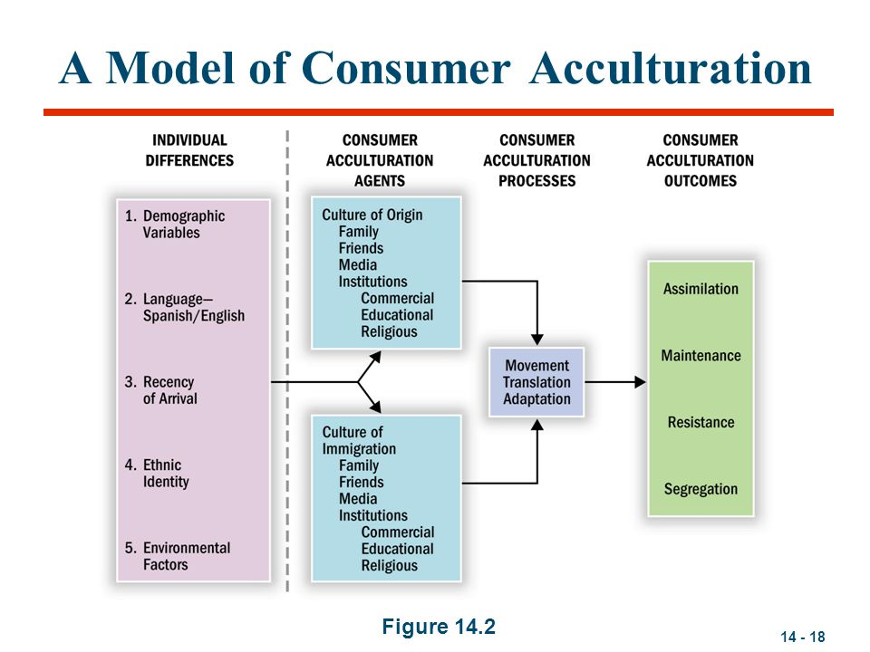 A Model of Consumer Acculturation