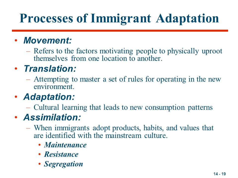 Processes of Immigrant Adaptation