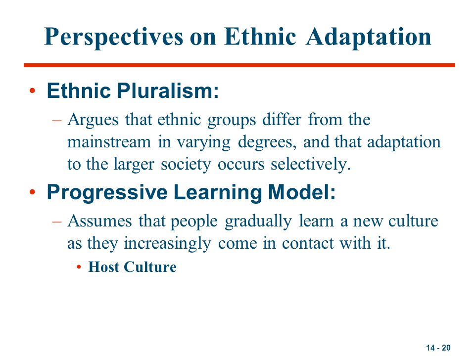 Perspectives on Ethnic Adaptation