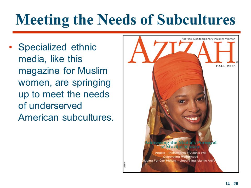 Meeting the Needs of Subcultures