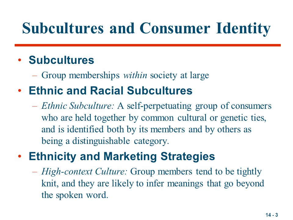 Subcultures and Consumer Identity