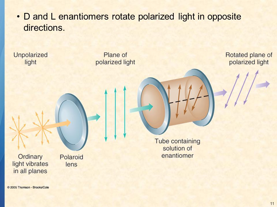 D and L enantiomers rotate polarized light in opposite directions.