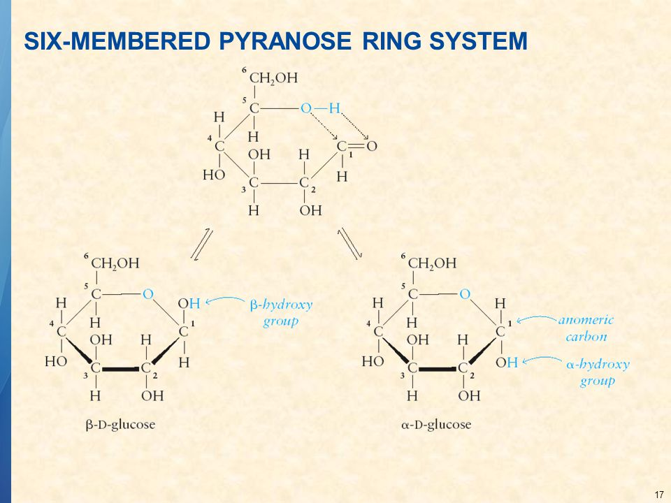 SIX-MEMBERED PYRANOSE RING SYSTEM