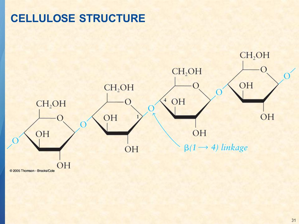 CELLULOSE STRUCTURE