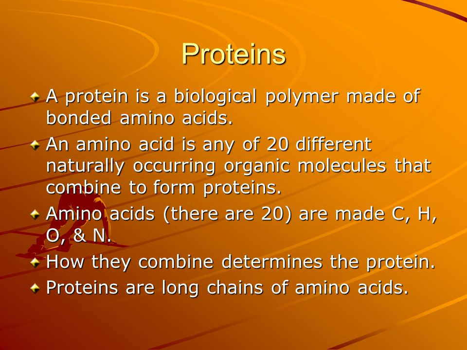 Proteins A protein is a biological polymer made of bonded amino acids.
