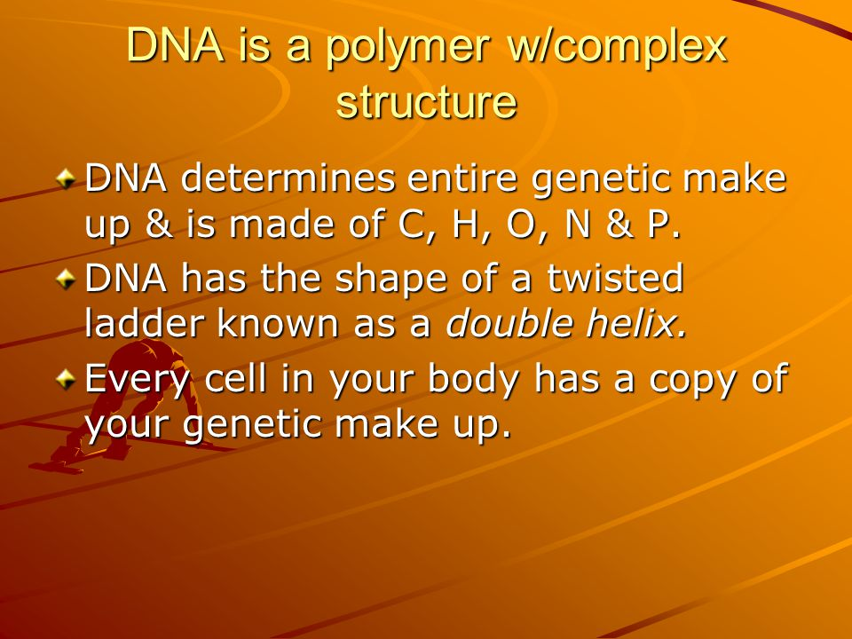 DNA is a polymer w/complex structure