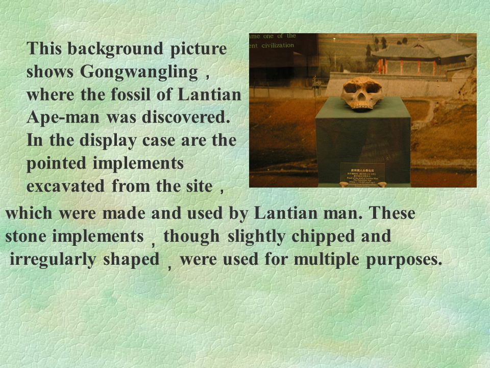 This background picture shows Gongwangling,where the fossil of Lantian Ape-man was discovered. In the display case are the pointed implements excavated from the site,
