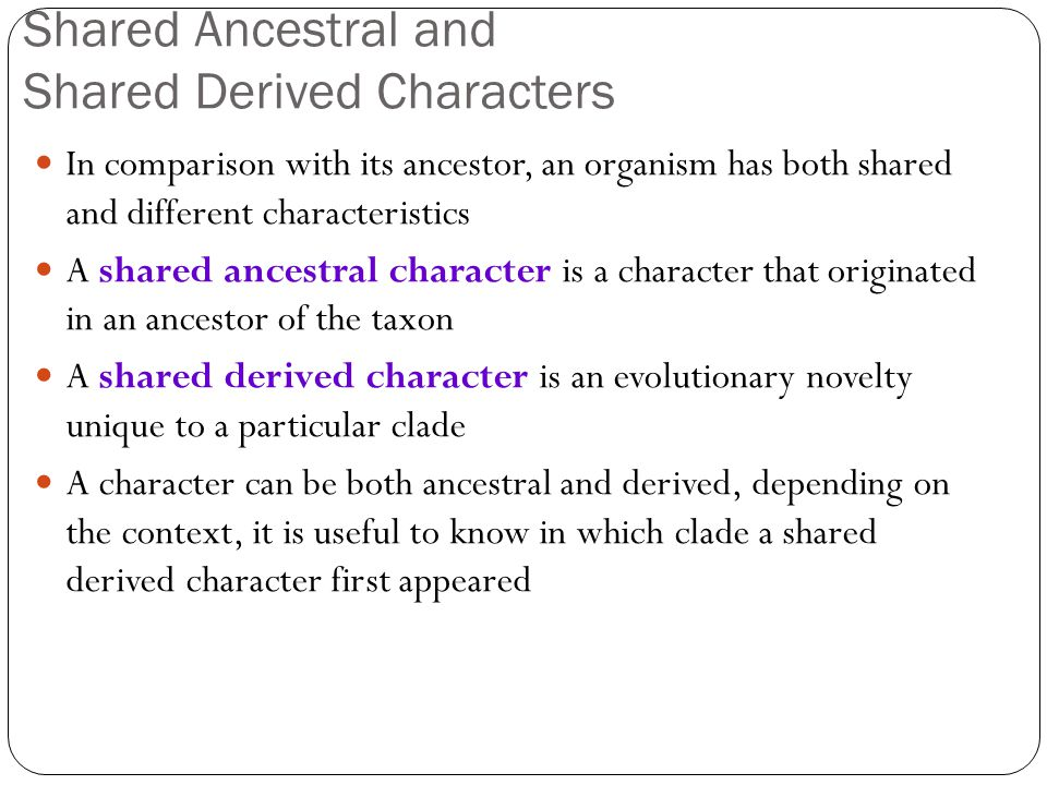 Shared Ancestral and Shared Derived Characters