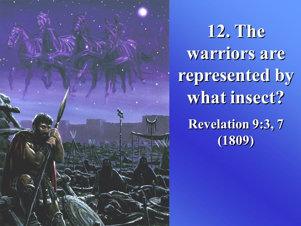 12. The warriors are represented by what insect
