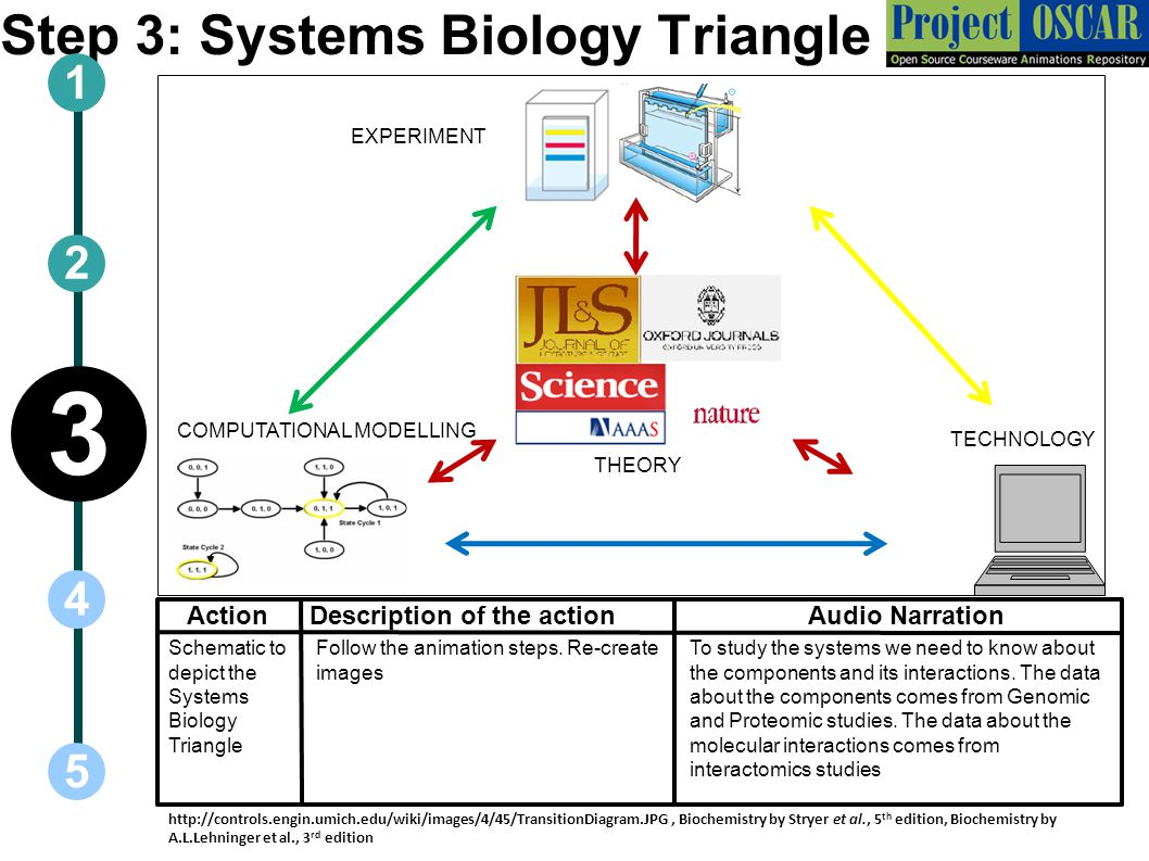 Step 3: Systems Biology Triangle