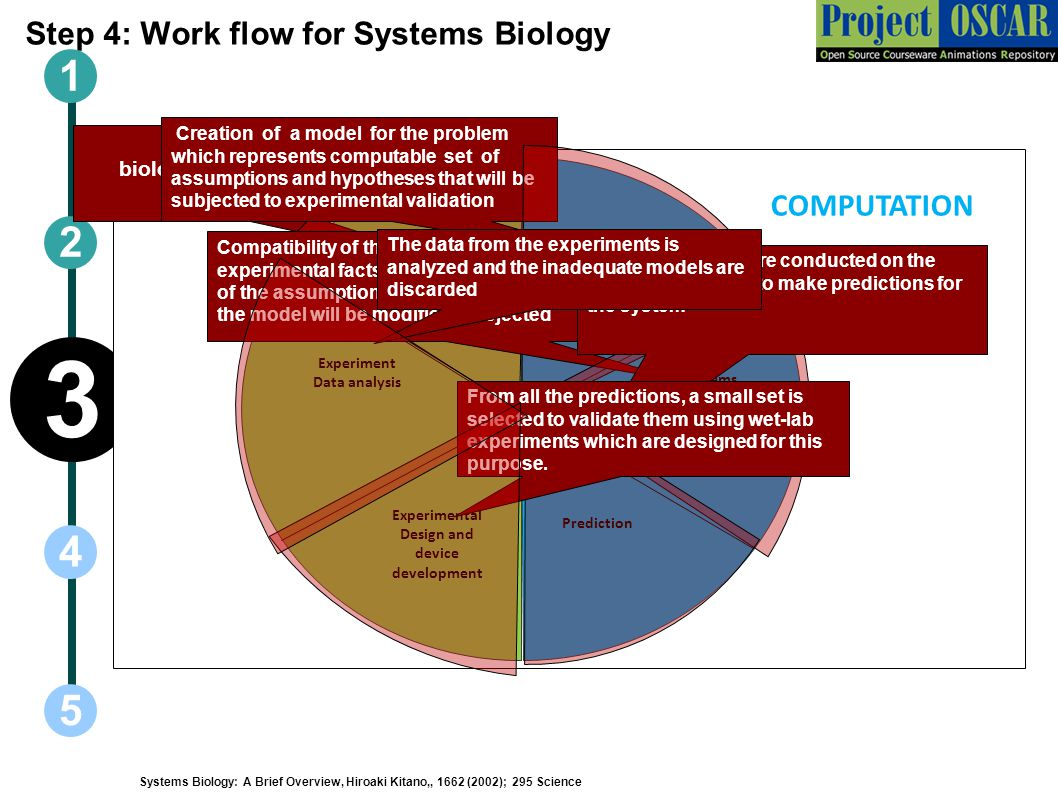 Step 4: Work flow for Systems Biology