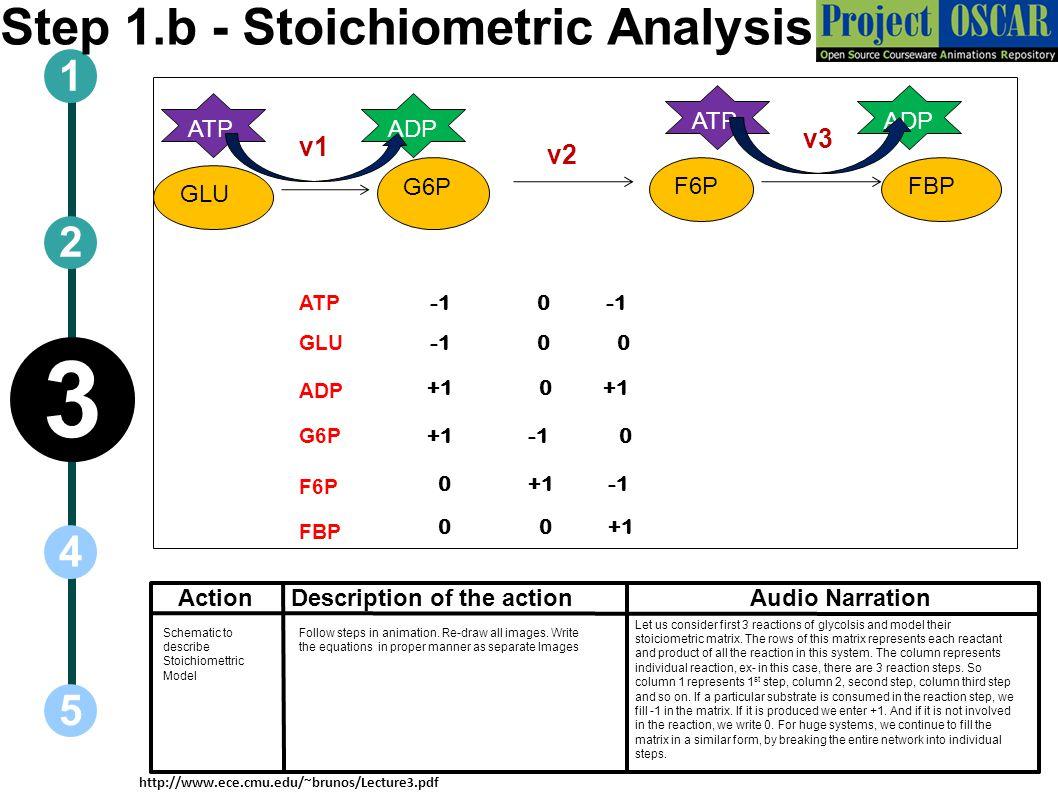 Step 1.b - Stoichiometric Analysis