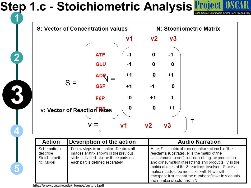 Step 1.c - Stoichiometric Analysis