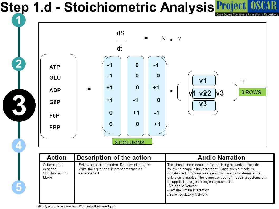 Step 1.d - Stoichiometric Analysis