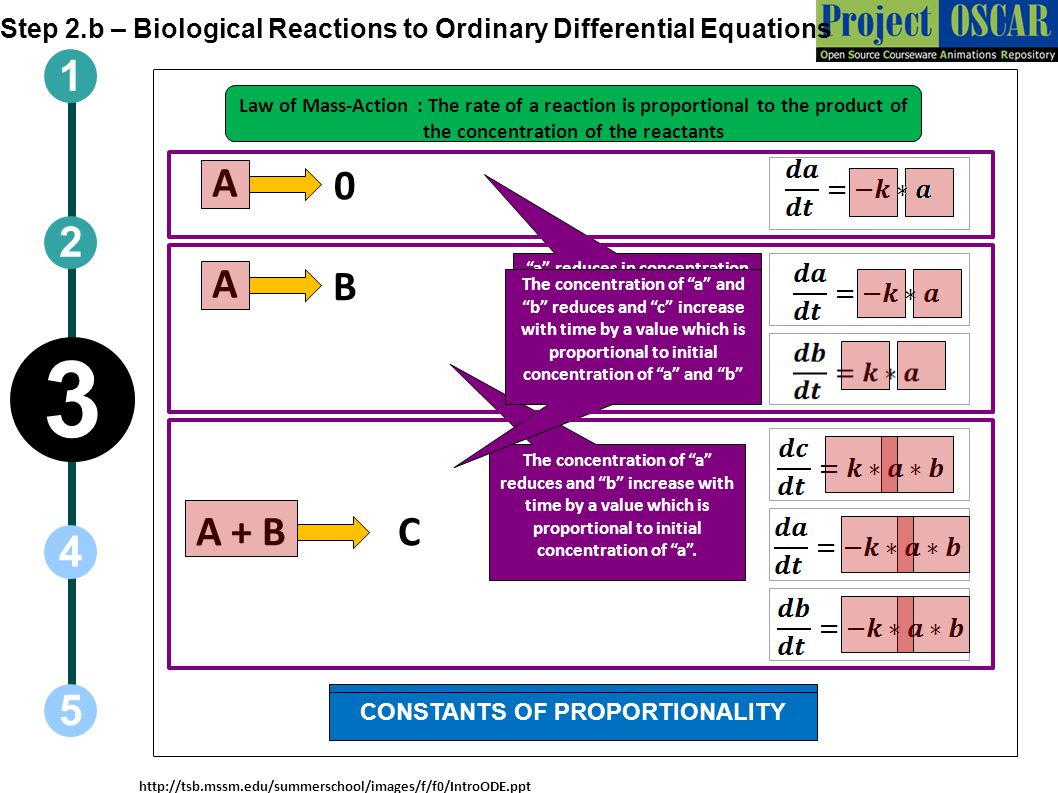 CONCENTRATION OF REACTANTS CONSTANTS OF PROPORTIONALITY