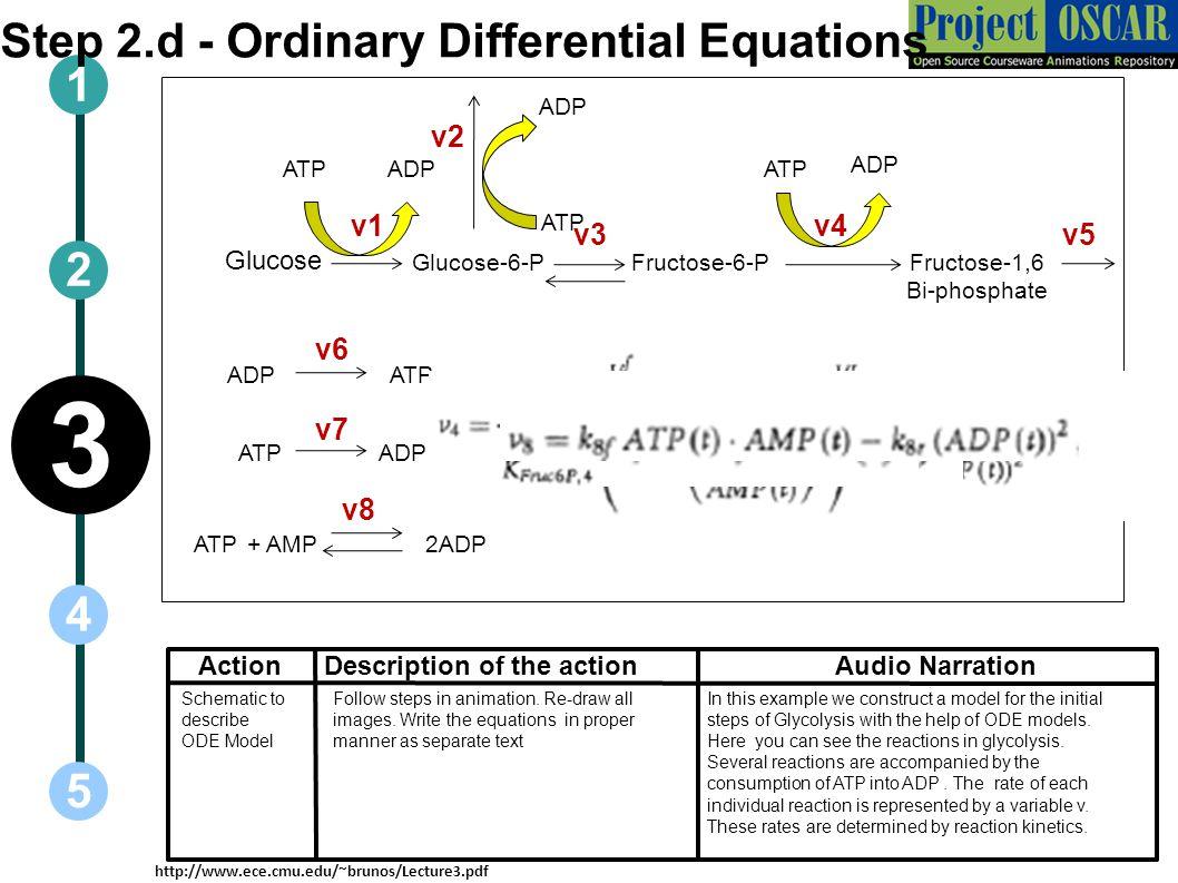 3 Step 2.d - Ordinary Differential Equations 1 2 4 5 v2 v1 v4 v3 v5 v6