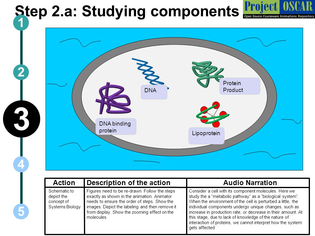 Step 2.a: Studying components
