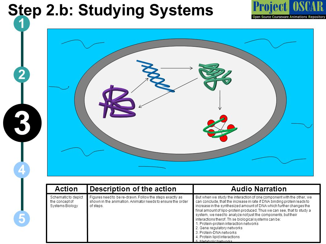 Step 2.b: Studying Systems