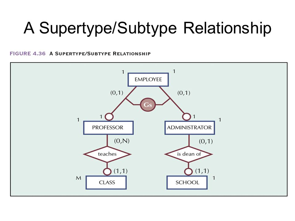 supertype and subtype relationship