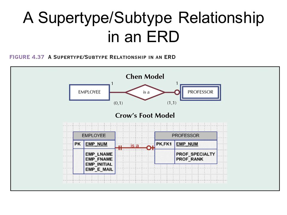A Supertype/Subtype Relationship in an ERD