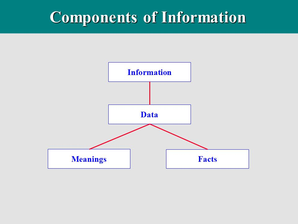 Components of Information