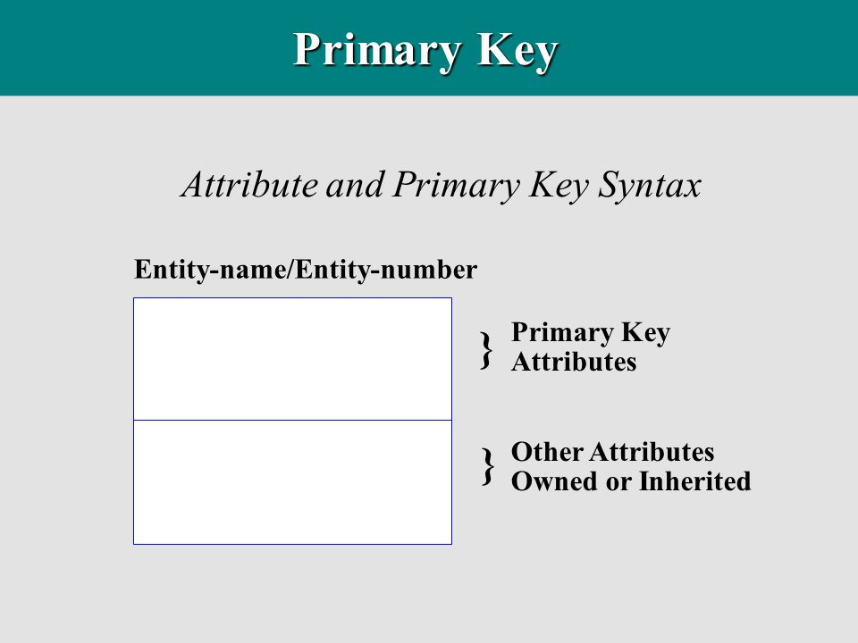 Attribute and Primary Key Syntax