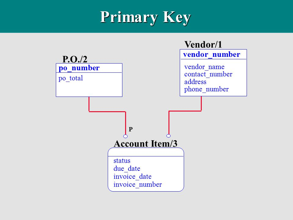Primary Key Vendor/1 P.O./2 Account Item/3 vendor_number po_number