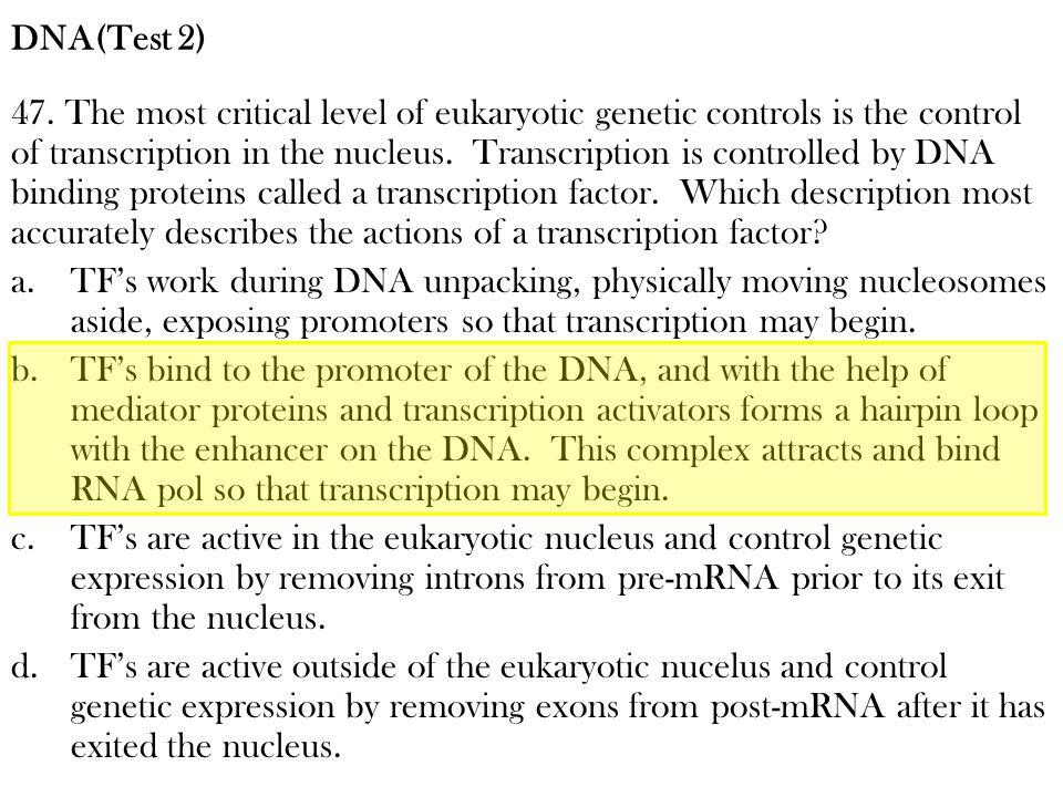 DNA(Test 2)