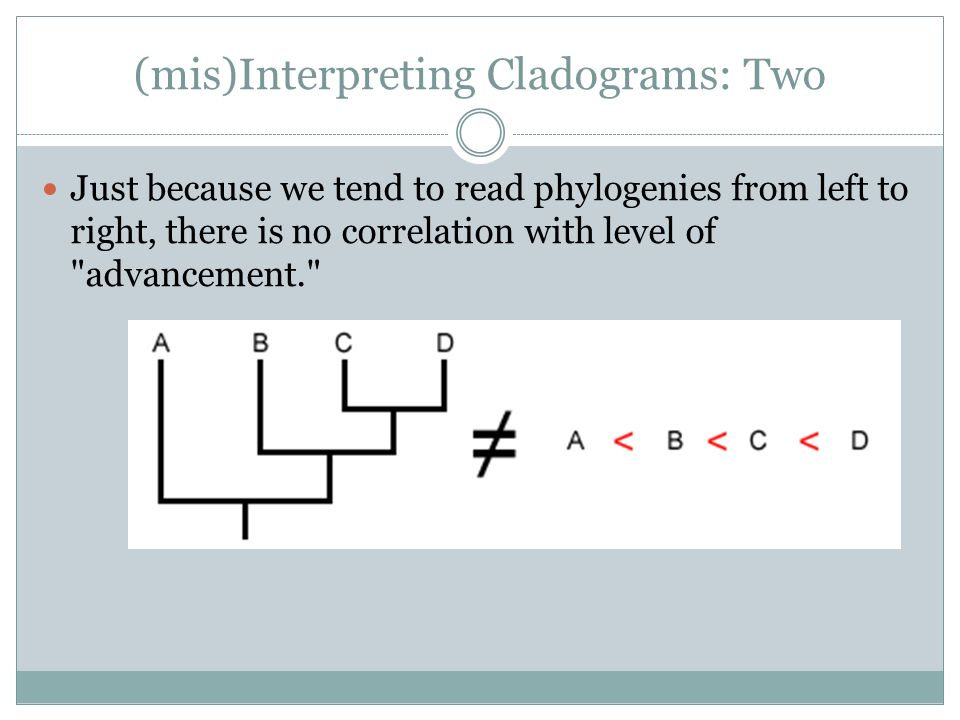 (mis)Interpreting Cladograms: Two