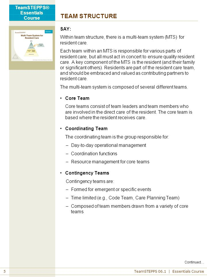 TEAM STRUCTURE SAY: Within team structure, there is a multi-team system (MTS) for resident care.