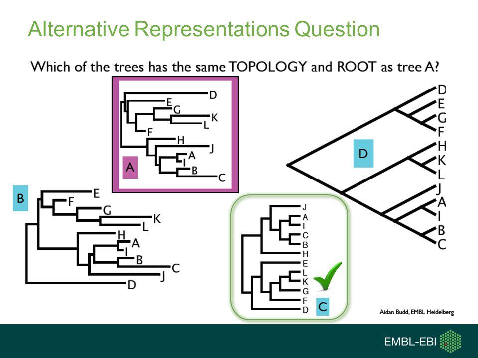 Alternative Representations Question
