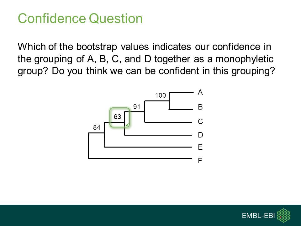 Confidence Question