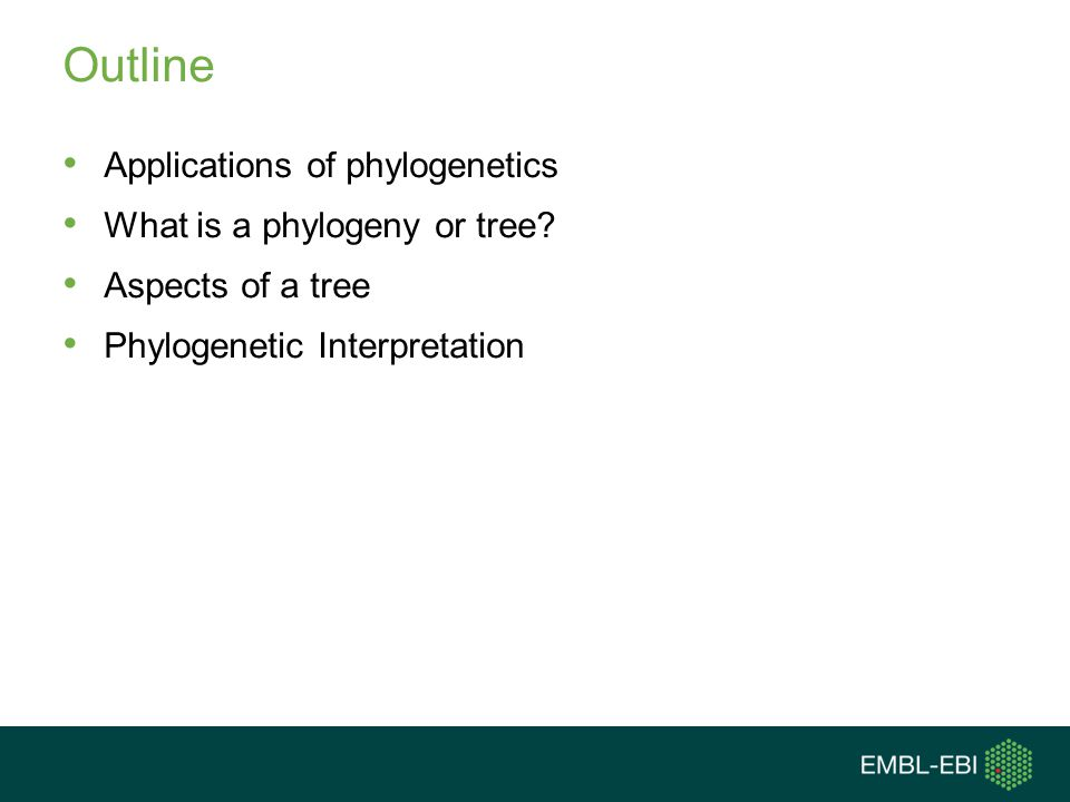 Outline Applications of phylogenetics What is a phylogeny or tree