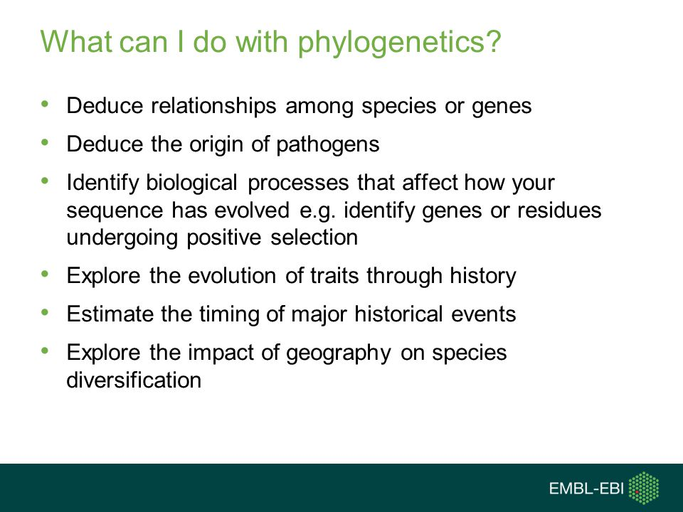 What can I do with phylogenetics