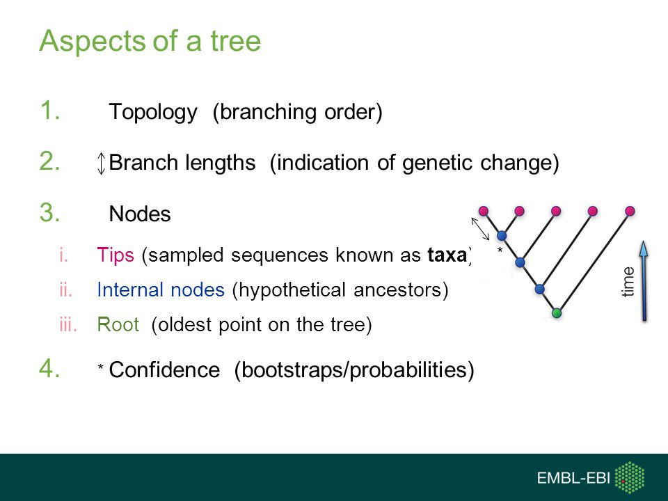 Aspects of a tree Topology (branching order)