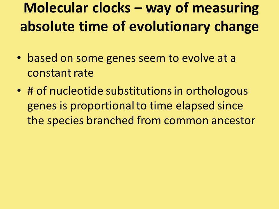 Molecular clocks – way of measuring absolute time of evolutionary change