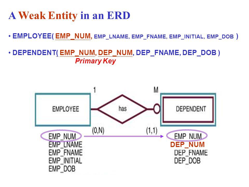 A Weak Entity in an ERD EMPLOYEE( EMP_NUM, EMP_LNAME, EMP_FNAME, EMP_INITIAL, EMP_DOB )
