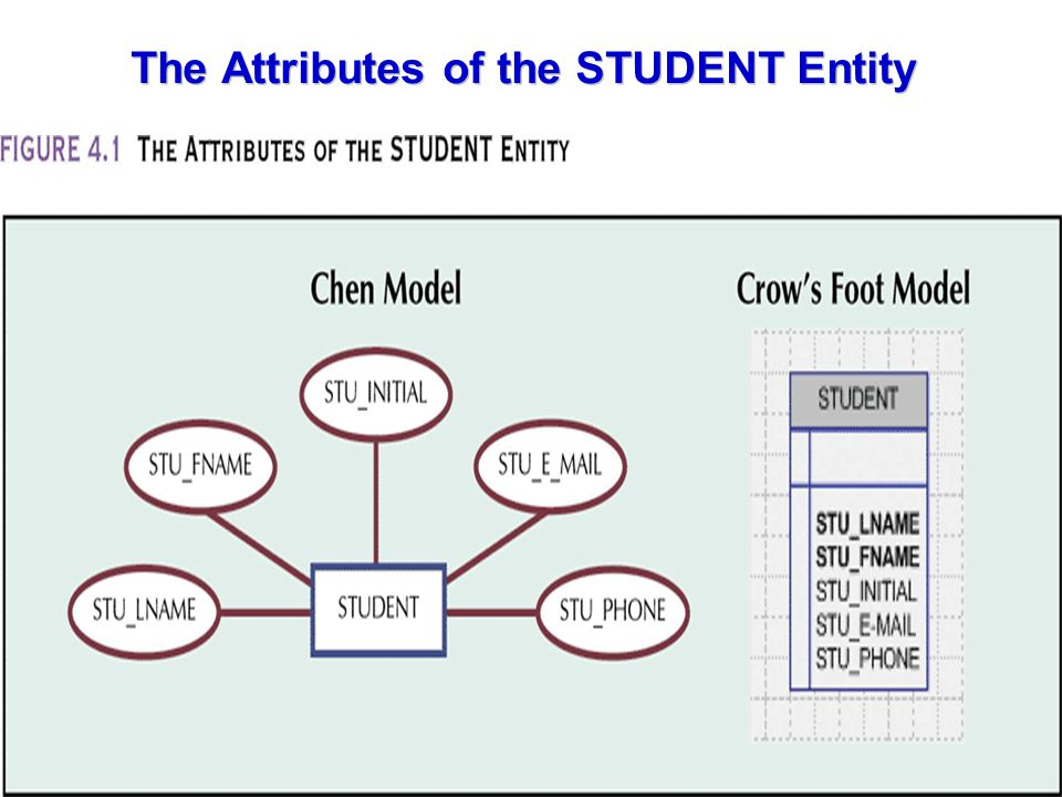 The Attributes of the STUDENT Entity