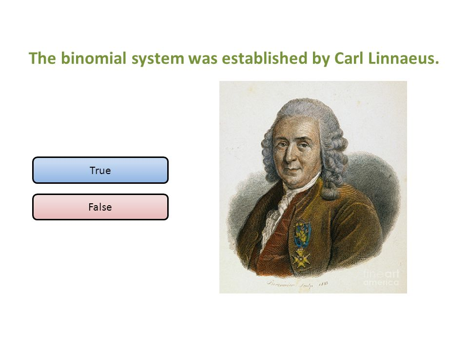 The binomial system was established by Carl Linnaeus.