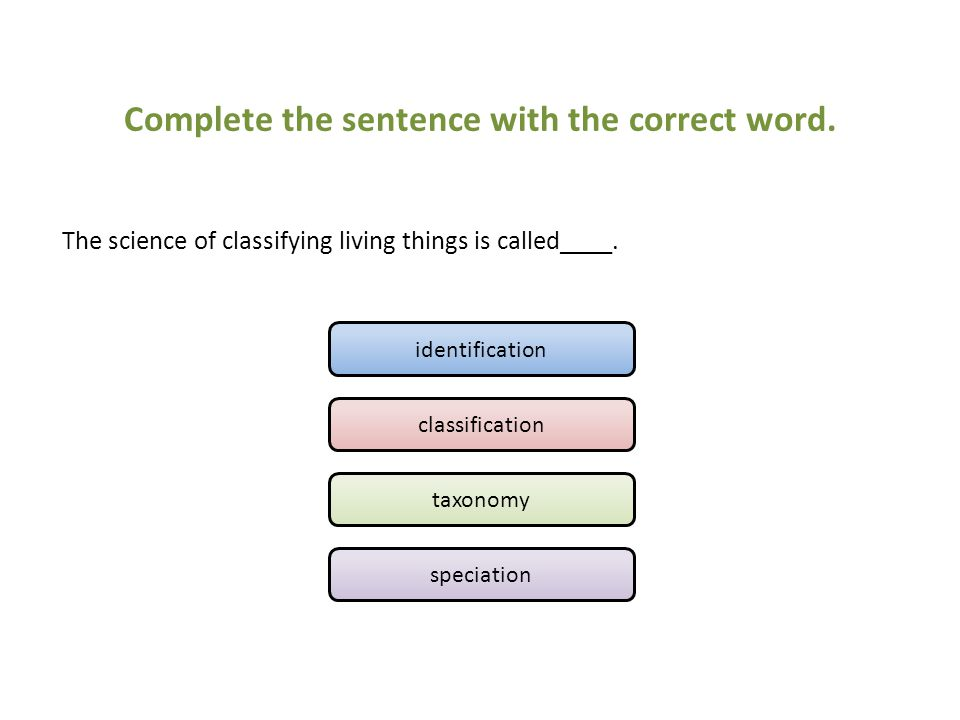 Complete the sentence with the correct word.